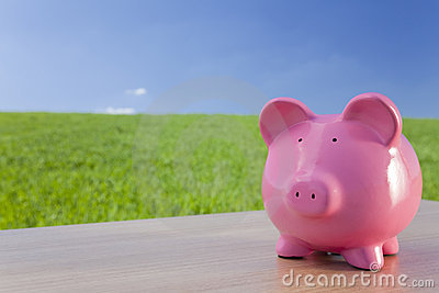 Pink Piggy Bank In A Green Field