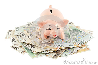 Piggy with money