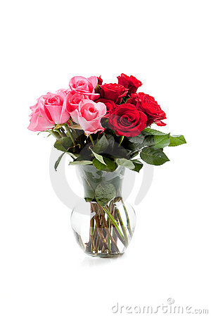Pink and red roses in a clear vase on white