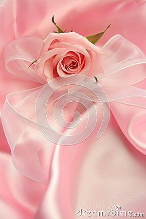 Free Pink Rose Stock Photo - 4023870