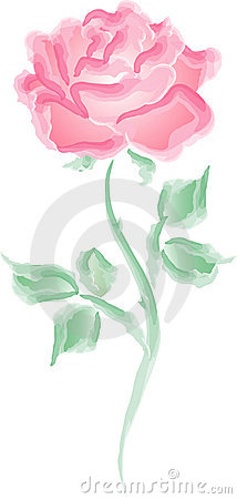 Free Pink Rose Stock Photography - 470222