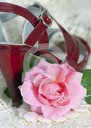 Pink rose against female a shoe