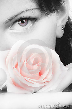 Free Pink Rose And Red Eye Royalty Free Stock Photo - 2525715