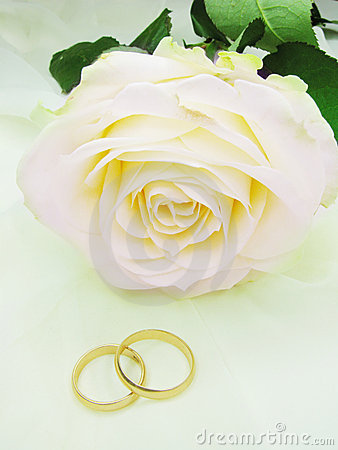 Free Pink Rose And Wedding Rings Stock Images - 18015594