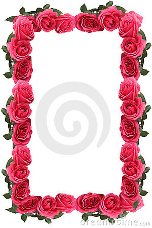 Pink rose border or frame