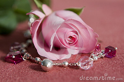 Pink rose and jewelery