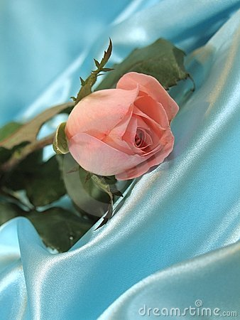 Free Pink Rose On Blue Satin Stock Photos - 1813483
