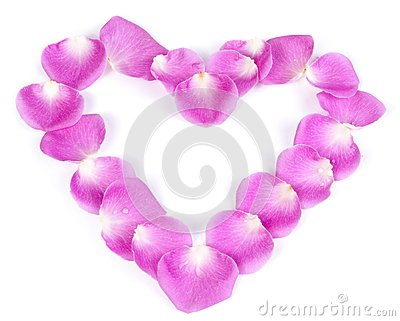 Pink rose petal heart