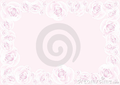 Pink rose on pink background 1