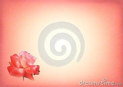 Pink Rose Print Card