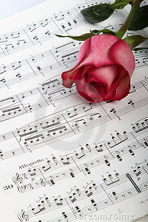 Pink rose on sheet music