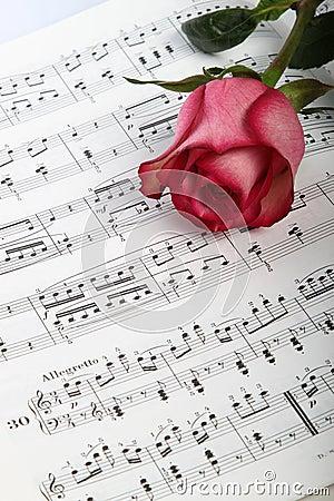 Pink rose on sheet music