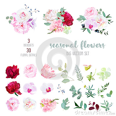 Pink rose, white and burgundy red peony, protea, violet orchid, hydrangea, campanula flowers Vector Illustration