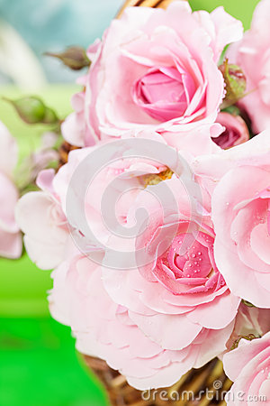 Free Pink Roses Stock Photography - 41511942