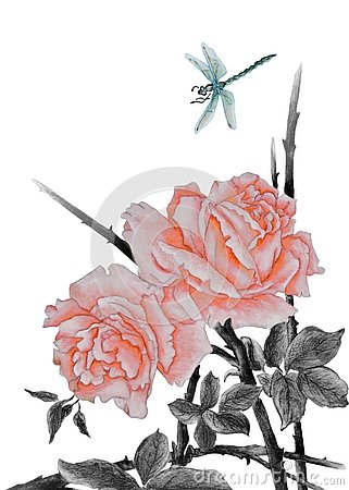 Free Pink Roses And Dragonfly Stock Photo - 126362610