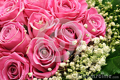 Pink roses with glitter