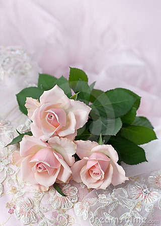 Free Pink Roses On Wedding Lace (copy Space) Royalty Free Stock Images - 13607169