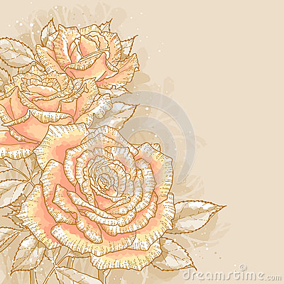 Pink roses on toned background