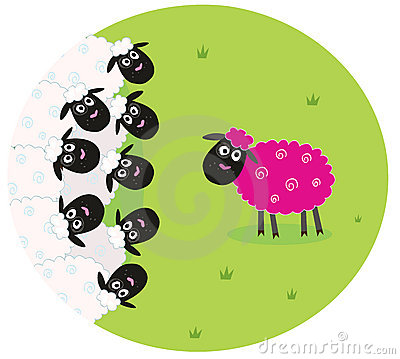 Pink sheep is lonely in the middle of white sheep