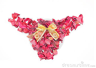 Pink shorts made of petals isolate.