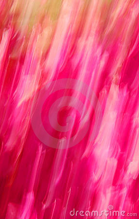 Pink streaks of color
