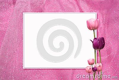 Pink Tulip Frame