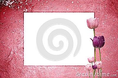 Pink Tulip Grunge