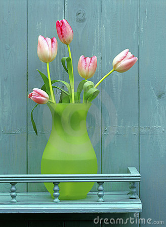 Pink tulips on blue