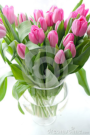 Free Pink Tulips In Vase Stock Images - 29700164
