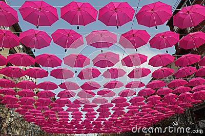 Pink umbrellas