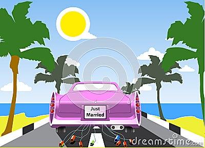 Pink wedding limousine