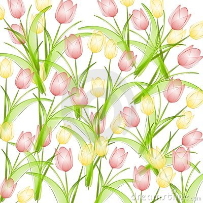 Pink Yellow Spring Tulips Background