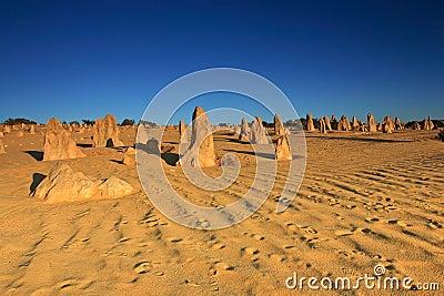 Pinnacles Desert,Western Australia