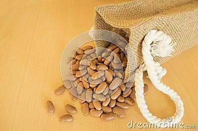 Pinto beans, Phaseolus vulgaris,