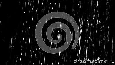 Pioggia persistente Alpha Channel archivi video