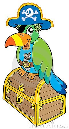 Pirate parrot sitting on chest