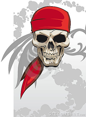 Free Pirate Skull Stock Photo - 12254890