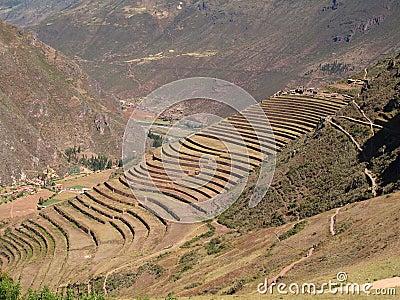 Pisac, Peruvian Terraced Lands