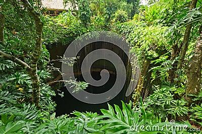 Piscina subterráneo Ik-Kil Cenote cerca de Chichen Itza