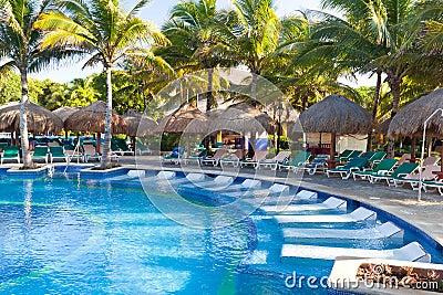 Piscine tropicale avec des sunbeds