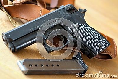 Pistol gun with magazine