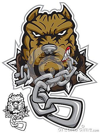 Pit-bull angrydog