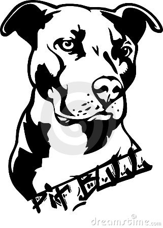 Free Pit Bull Dog Illustration Stock Photography - 6090422