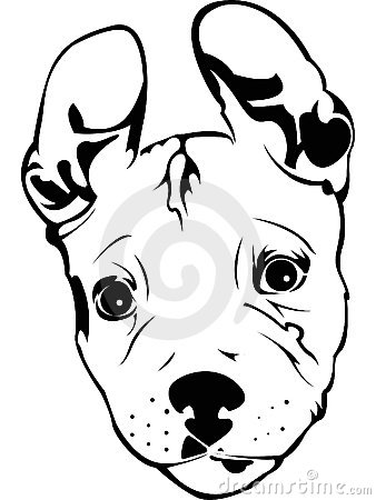 moreover Stock Images Pit Bull Puppy Image13155444 further  also  on pitbull dog house plans