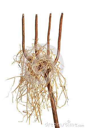Free Pitchfork With Hay Royalty Free Stock Image - 52143906