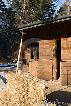 Free Pitchwork In Hay And Horse Looking From  Stable Stock Photos - 8371793