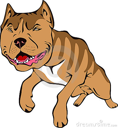 Pitt bull illustration