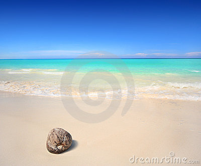 Plażowy koks