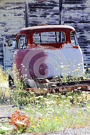 Placas da oxidação & do celeiro