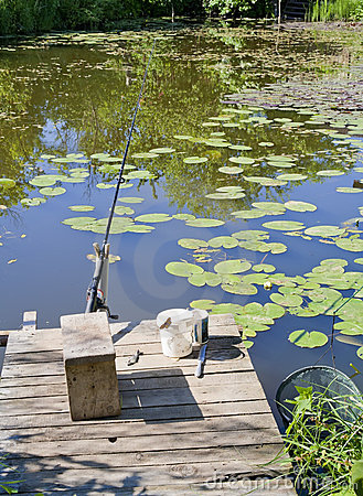 Free Place For Fishing In A Small Rural Pond Royalty Free Stock Photo - 19803615